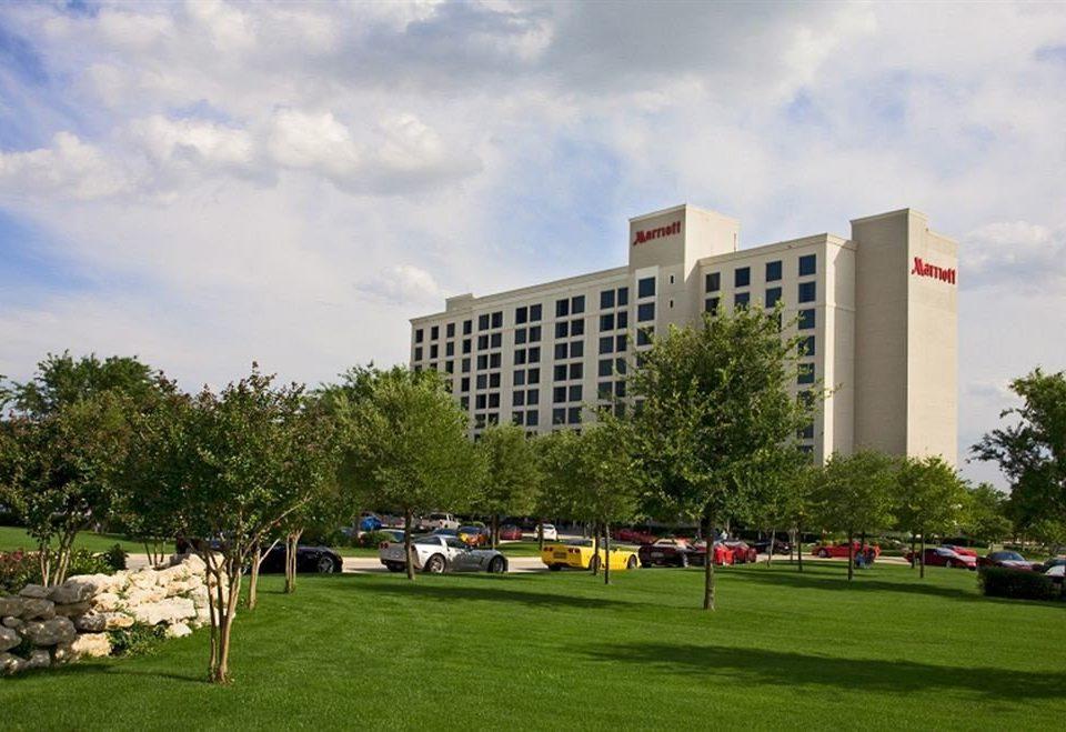 grass sky tree City neighbourhood residential area campus park day