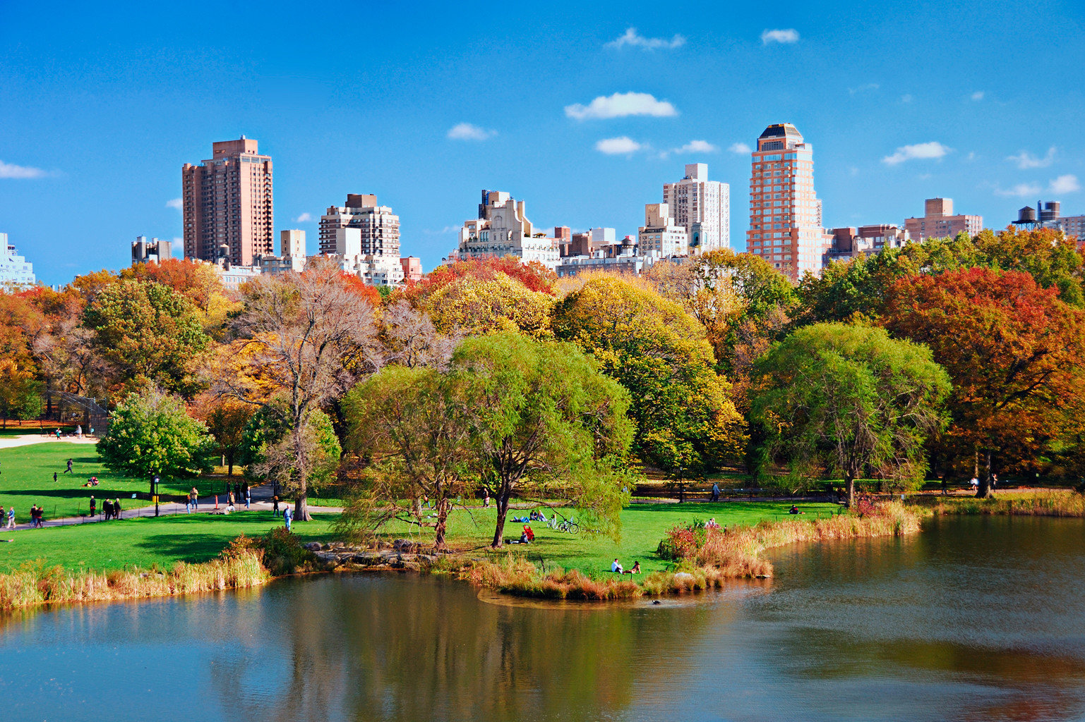 City Classic Lake Nature Parks Scenic views water tree River sky skyline plant park flower season pond woody plant cityscape autumn surrounded