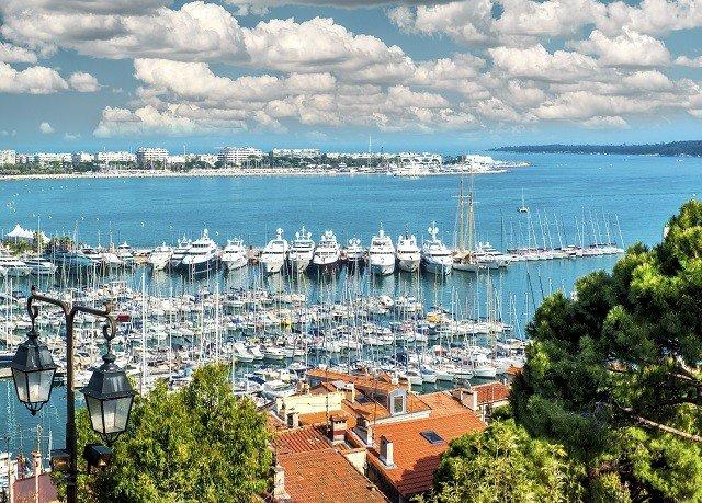 water tree marina dock Sea Coast Harbor infrastructure cityscape port City shore