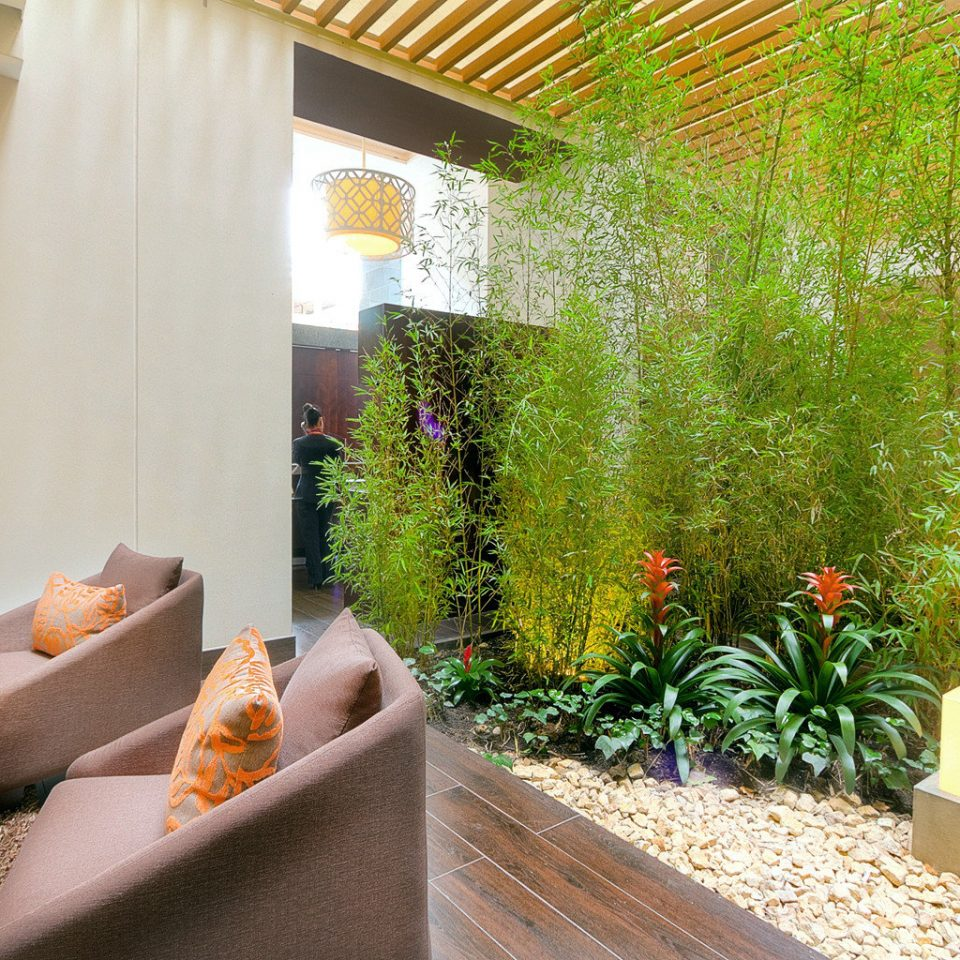 City Lounge Modern property Courtyard home backyard Lobby condominium Villa Garden yard