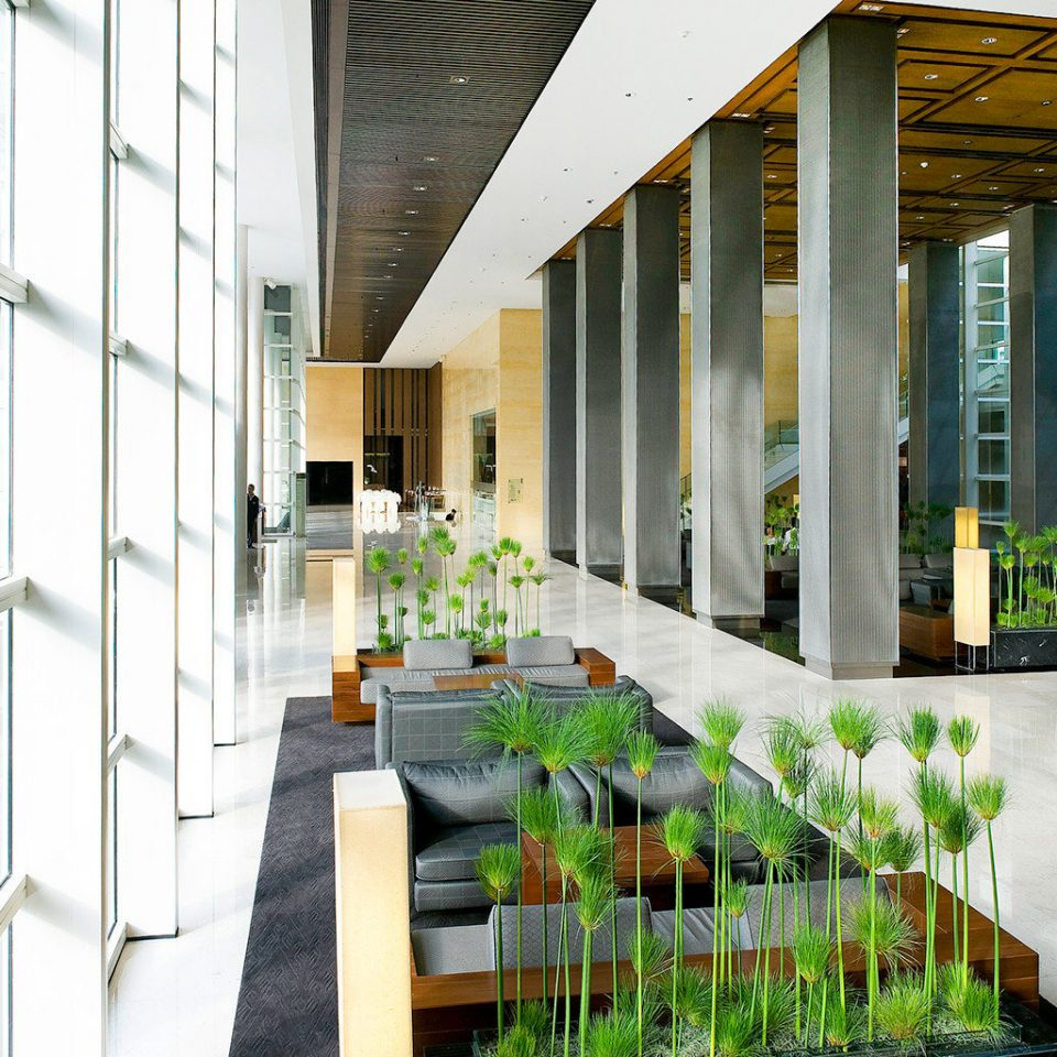 City Lobby Modern Shop building professional condominium home Courtyard headquarters orangery