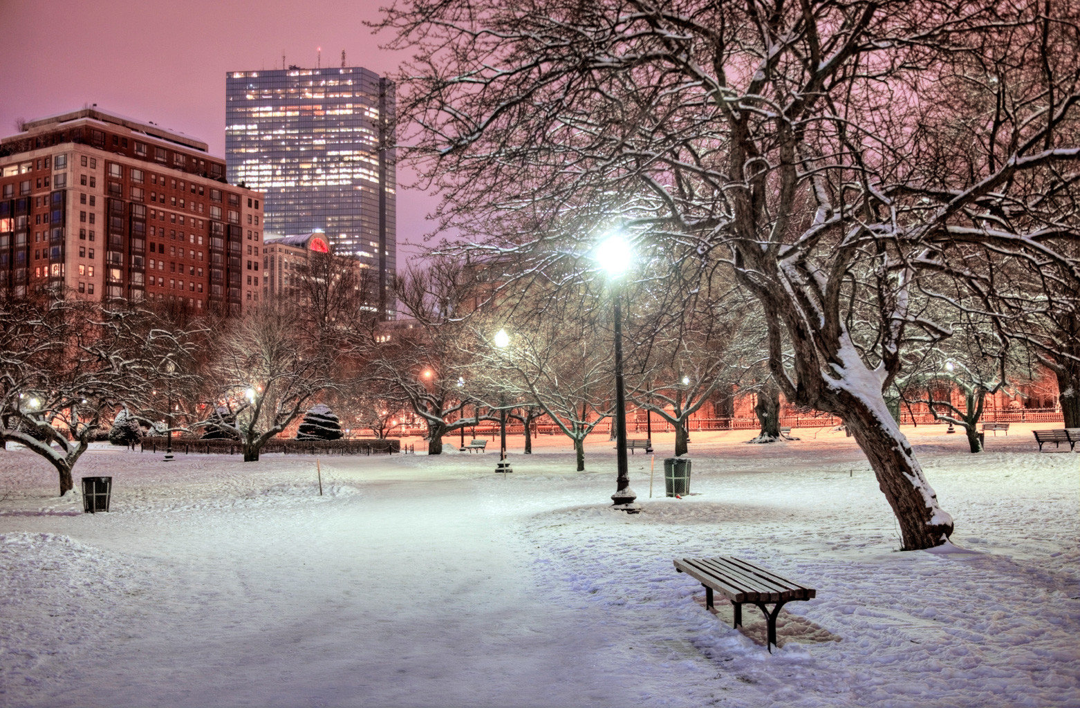 City Cultural Exterior Grounds Landmarks Monuments Museums Nightlife Scenic views tree snow Winter weather park season sidewalk freezing night way morning evening