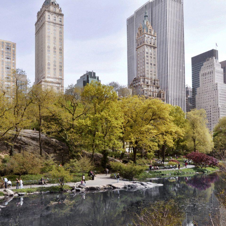 tree sky landmark City skyline waterway cityscape Downtown tours flower