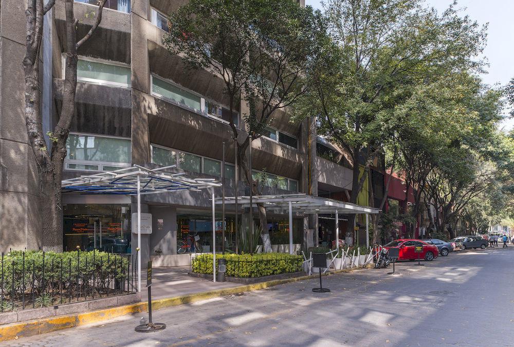 tree road Town neighbourhood residential area City lane plaza street Downtown infrastructure pedestrian suburb restaurant condominium