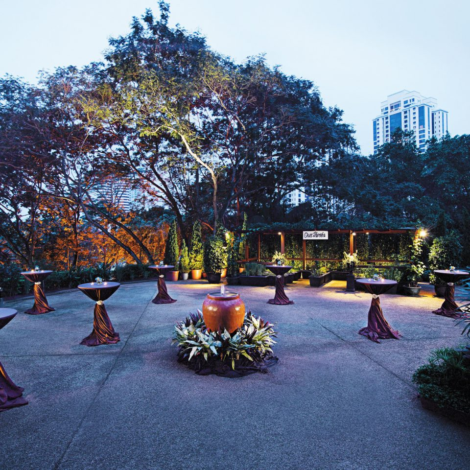 City Elegant Grounds Outdoors Resort tree sky road season woody plant park flower spring town square autumn Garden