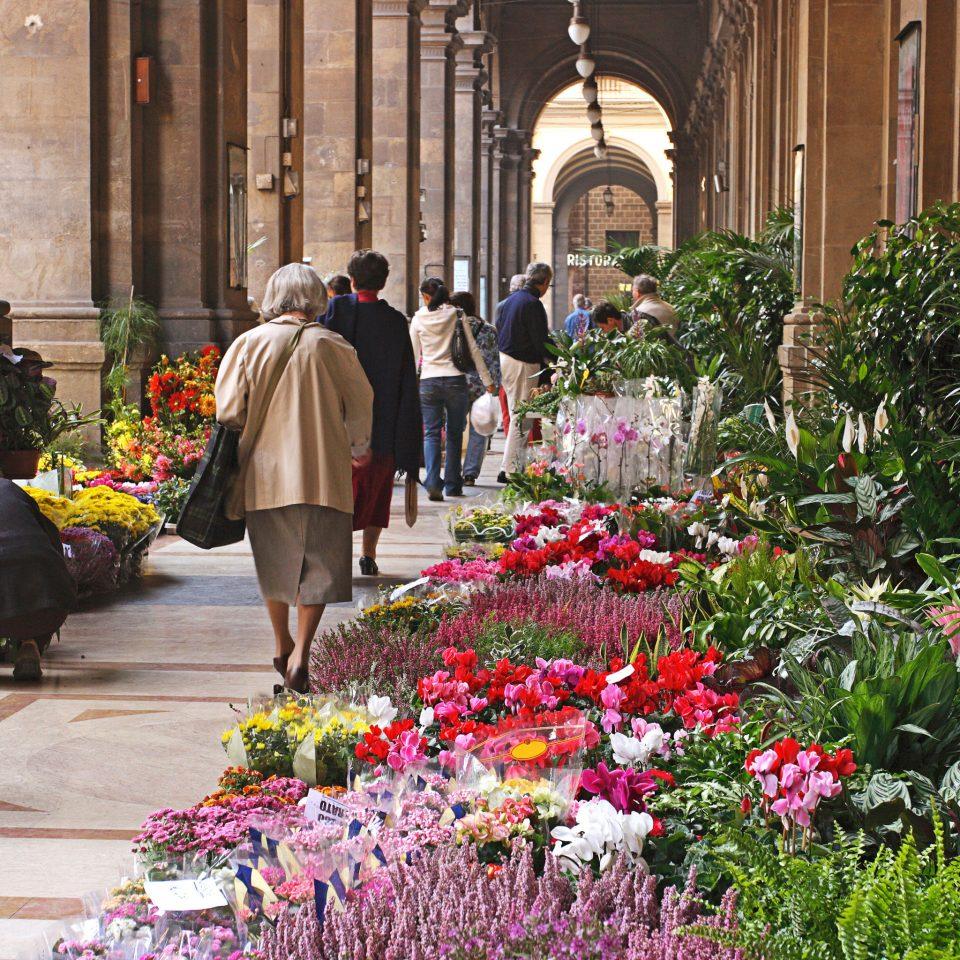 flower floristry City Garden plant sidewalk altar colonnade