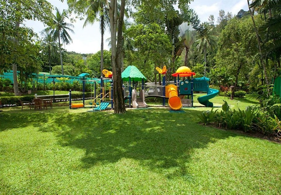 tree grass leisure Playground public space City outdoor play equipment Play backyard outdoor recreation recreation park lawn camping yard Resort Garden plant