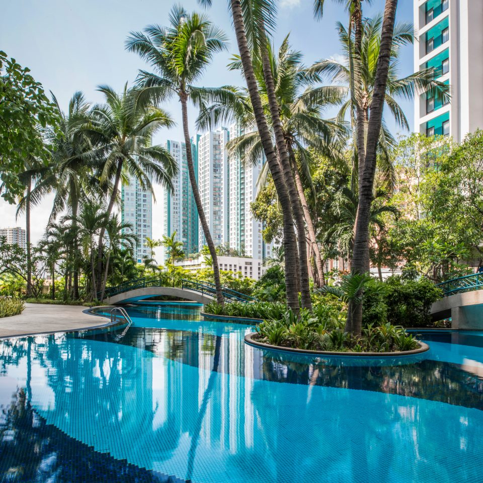 City Grounds Pool Resort Tropical tree swimming pool property leisure condominium blue resort town arecales