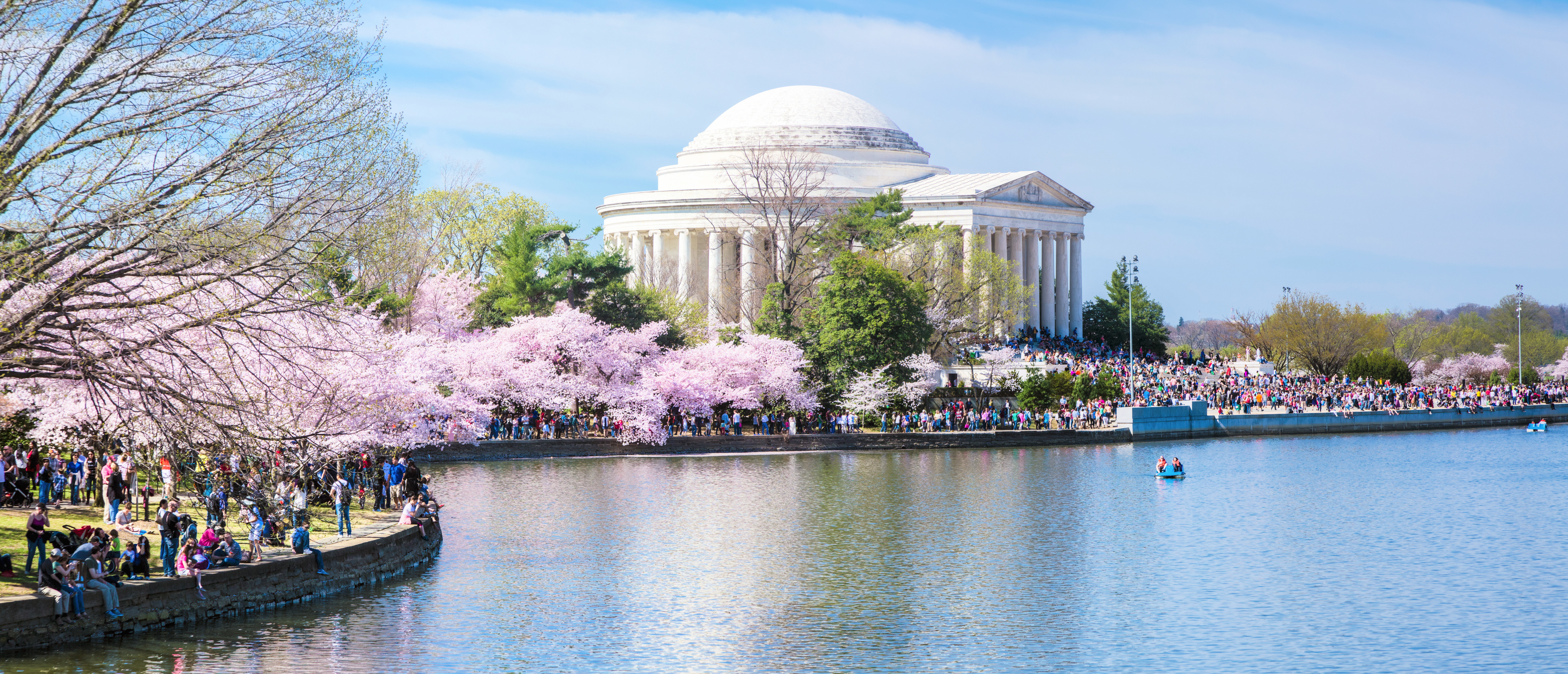 City Lake Monuments water tree sky flower River waterside Nature cherry blossom waterway blossom colored