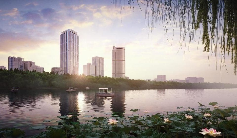 water River Lake atmospheric phenomenon skyline City horizon morning cityscape Nature evening skyscraper dusk sunlight flower dawn Sunset waterside shore surrounded