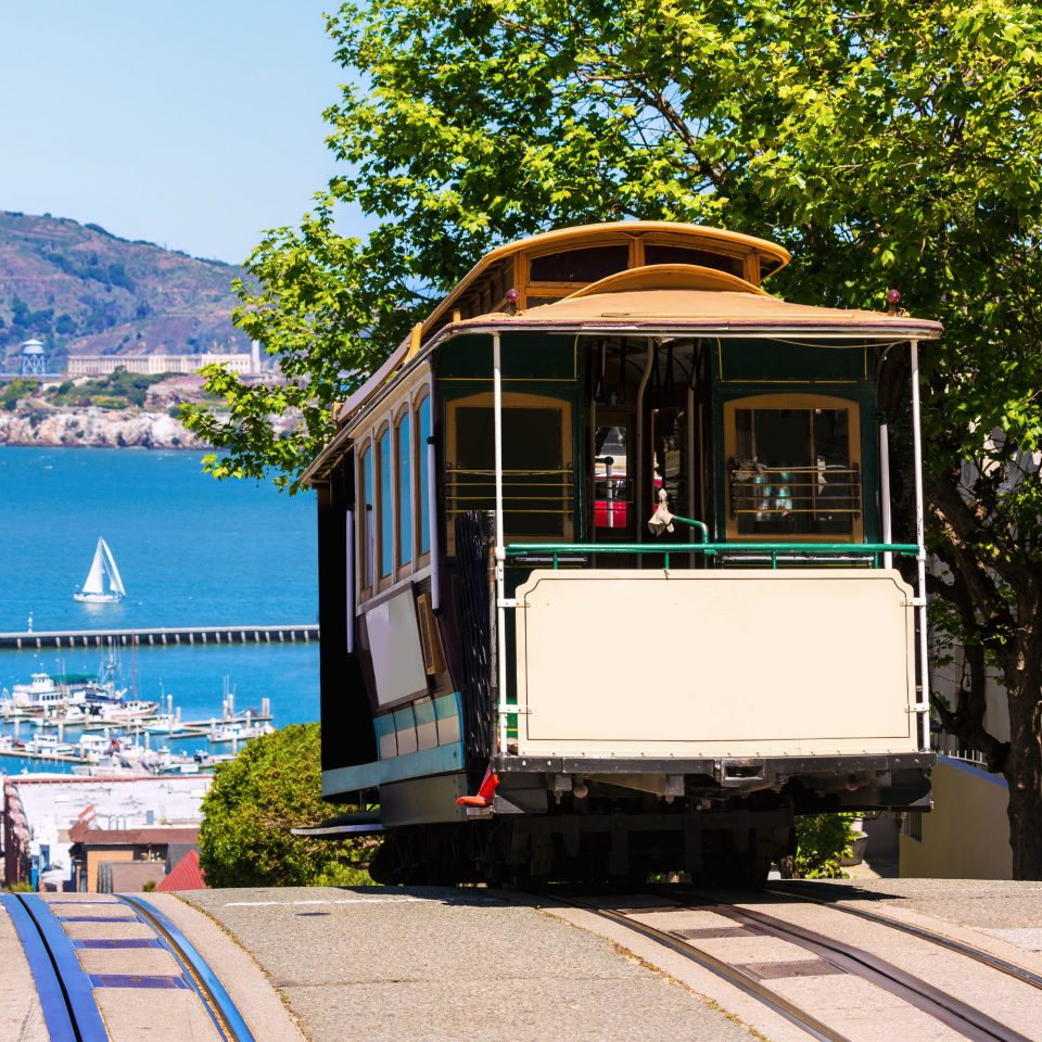 City Landmarks Outdoors tree vehicle transport land vehicle rolling stock train public transport cable car rail transport