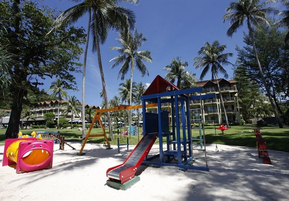 tree Playground outdoor play equipment City public space leisure Play outdoor recreation Resort recreation park Water park palm lined