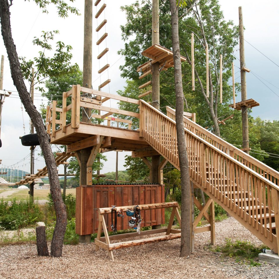 tree sky ground Playground outdoor play equipment City public space wooden outdoor structure backyard