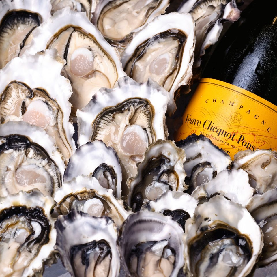 City animal oyster food invertebrate Seafood mollusk animal source foods fish clams oysters mussels and scallops