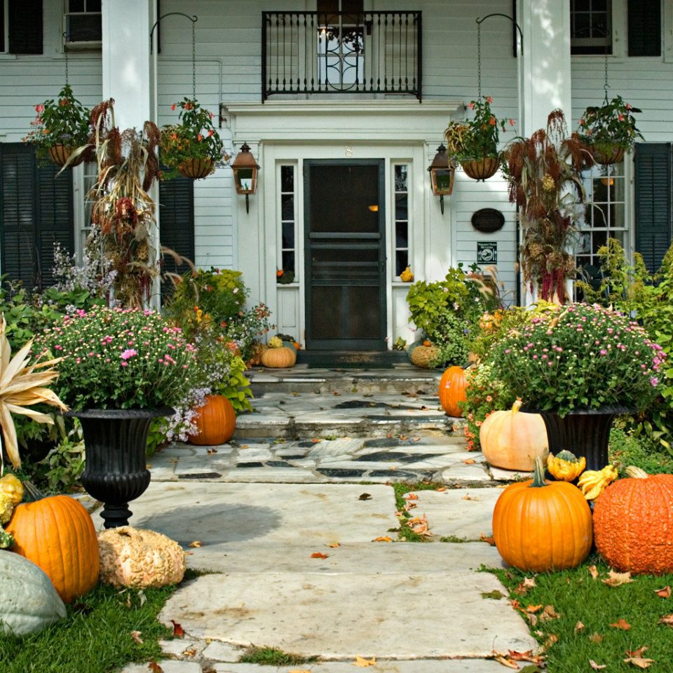 Classic Country Exterior Garden Grounds Inn yard backyard home Courtyard flower porch fruit lawn autumn outdoor structure landscaping