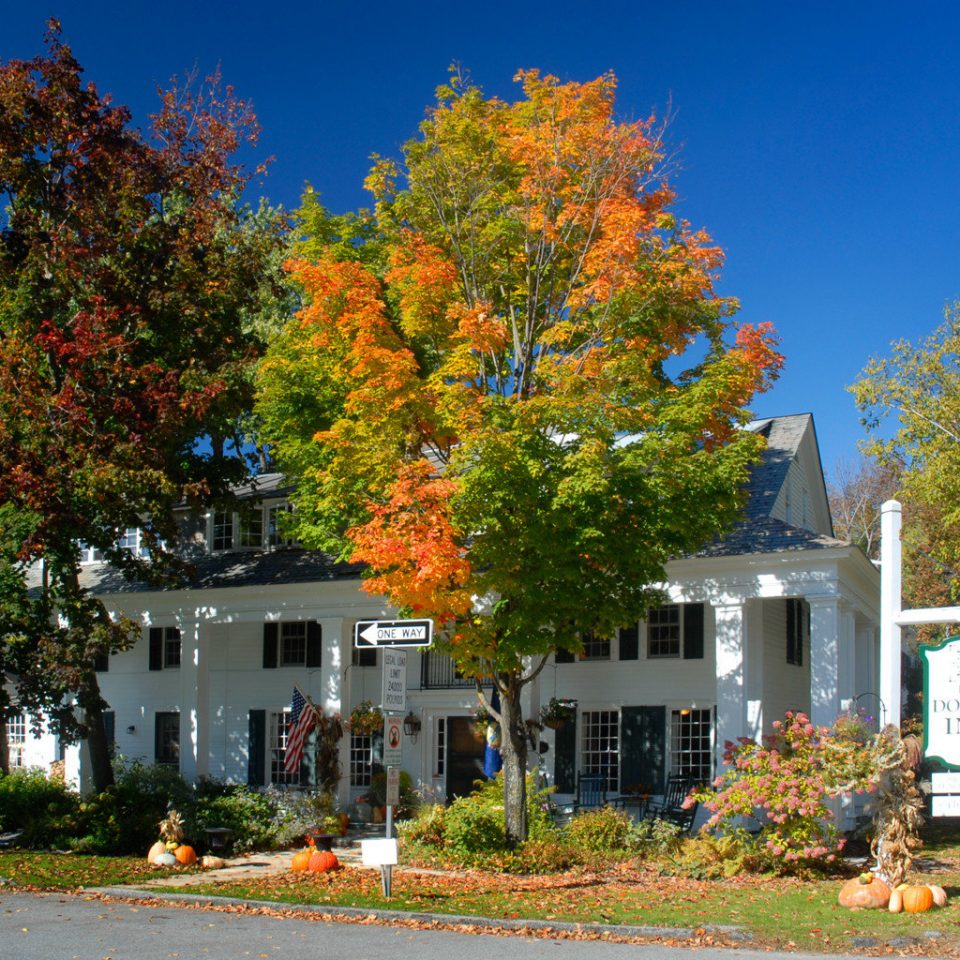 Classic Country Exterior Grounds Inn tree sky house residential area neighbourhood season autumn home woody plant plant suburb leaf rural area cottage