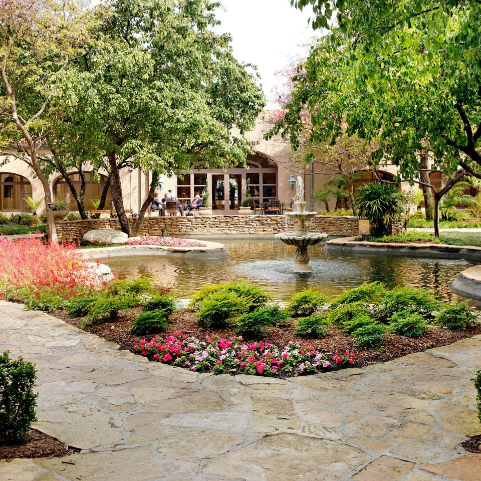 Classic Elegant Grounds Luxury tree ground Courtyard plaza Garden reflecting pool plant backyard water feature landscape architect yard botanical garden flower palace dirt
