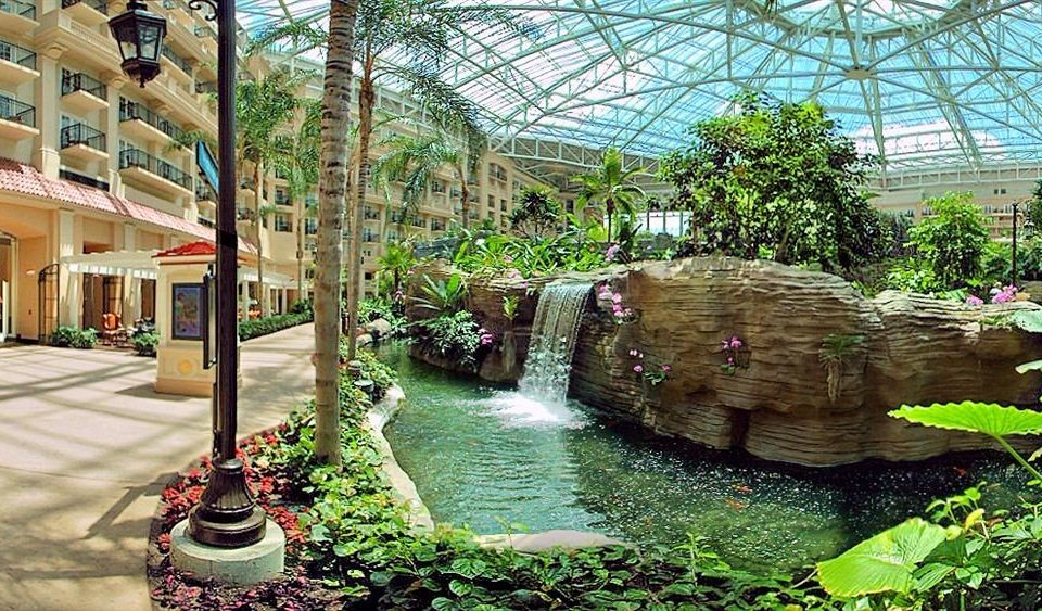 Classic Resort building botany Garden backyard greenhouse yard flower pond Courtyard botanical garden