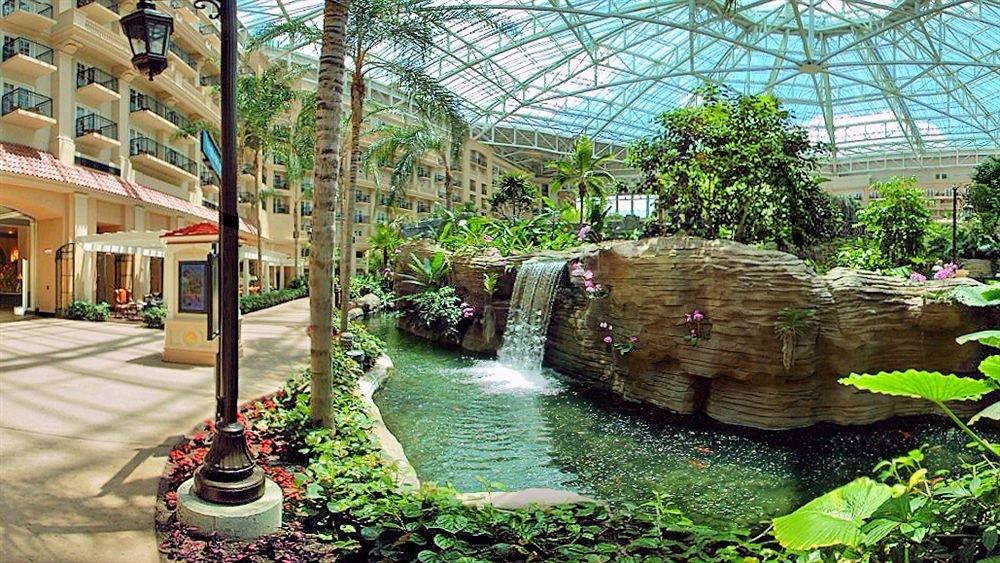 Classic Resort building botany Garden backyard greenhouse yard flower pond Courtyard botanical garden