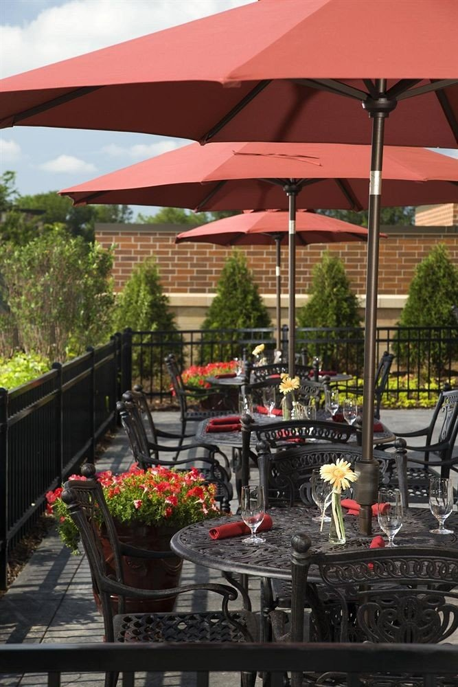 Classic Patio tree restaurant outdoor structure