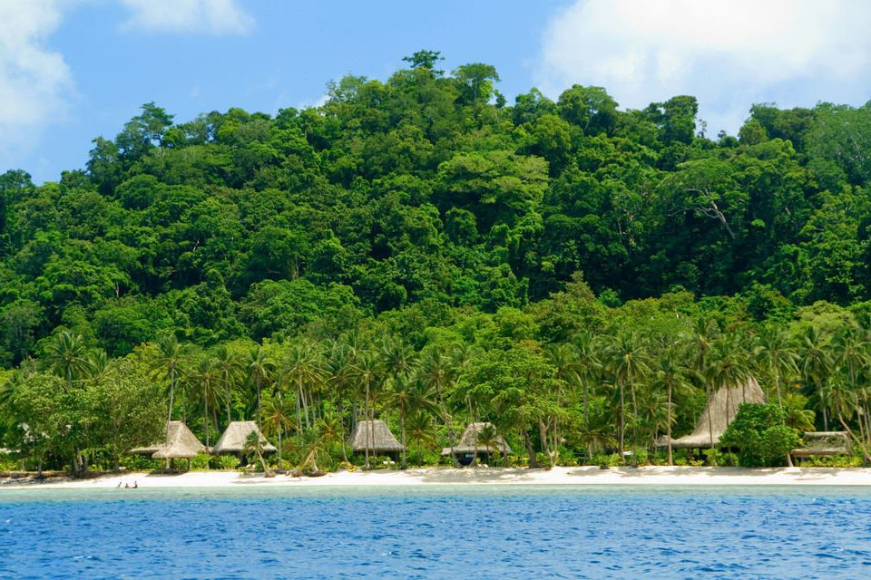tree water sky habitat ecosystem Lake caribbean tropics Nature Island Sea Lagoon Jungle Coast islet surrounded Forest swimming shore
