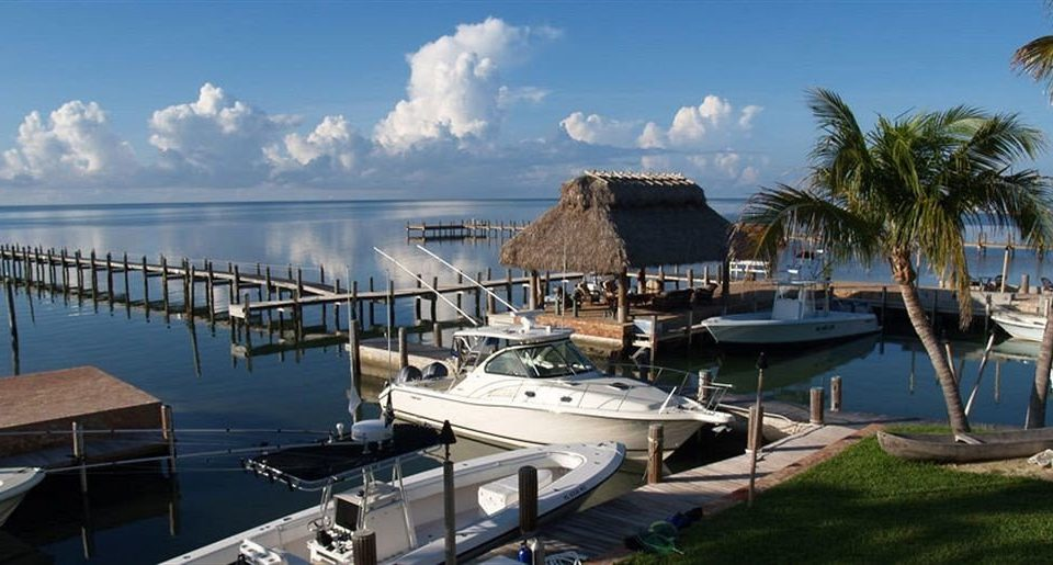 sky water marina dock Sea vehicle Coast Harbor lined palm