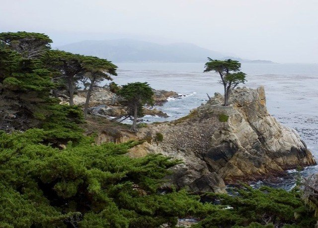 water rock sky Coast tree rocky shore cliff Sea Nature woody plant terrain islet cove cape plant Island hillside