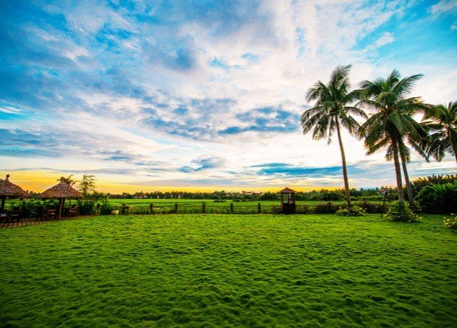 sky grass water Nature horizon green tree agriculture cloud grassland field arecales Sea hill rural area landscape plant sunlight Coast meadow lawn paddy field tropics dusk Sunset distance day lush