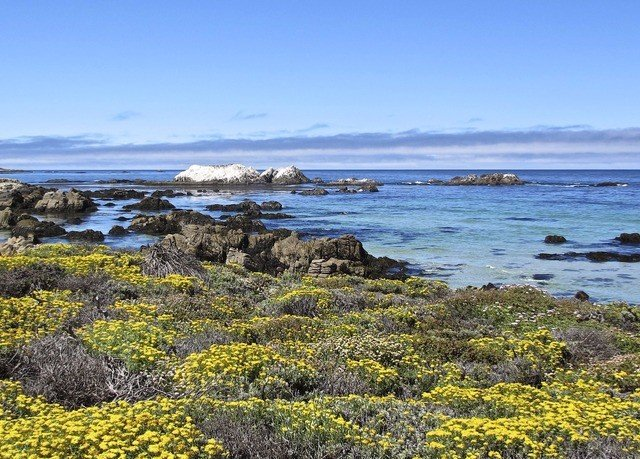sky water grass habitat Coast shore natural environment ecosystem Sea horizon Ocean loch rock tundra cove terrain lichen cliff cape plant overlooking hillside
