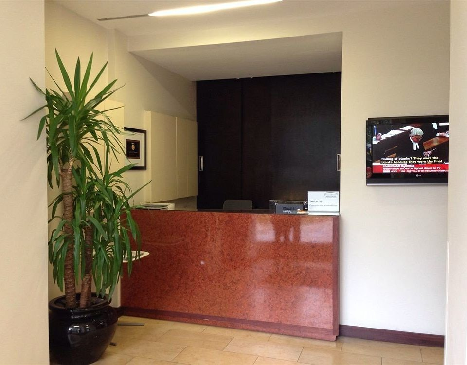 property home plant living room condominium