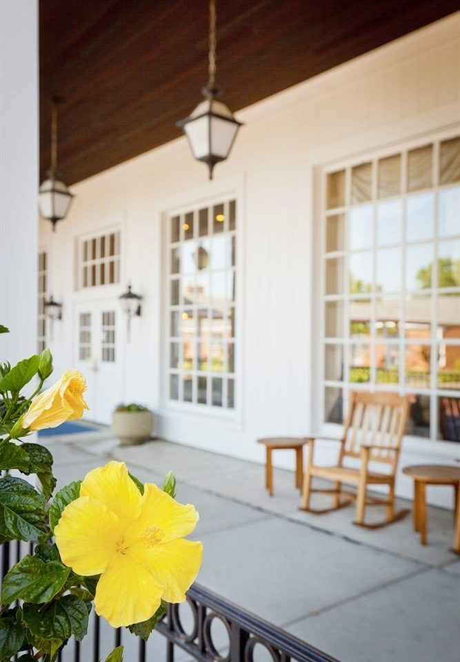 property yellow home flower porch cottage farmhouse living room