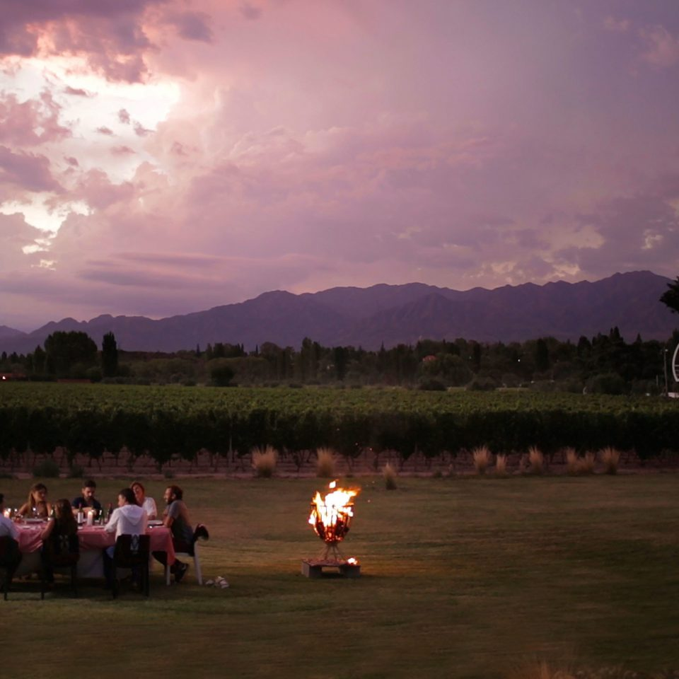 Country Cultural Dining Drink Eat Elegant Firepit Outdoors Resort Romantic Scenic views Sunset Vineyard Wine-Tasting sky grass cloud evening morning night dusk atmosphere of earth dawn screenshot sunrise field