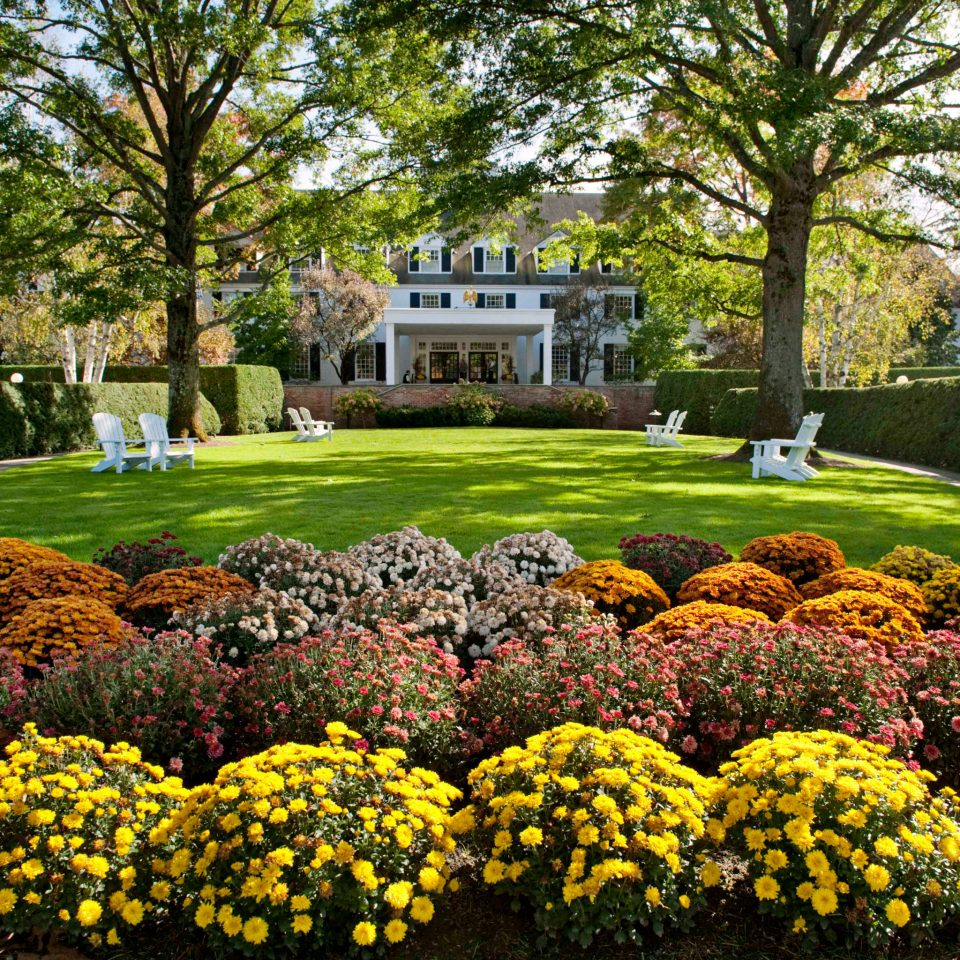 Country Exterior Grounds Inn Resort Trip Ideas tree flower grass Garden lawn flora botany plant leaf yard botanical garden park backyard autumn landscape architect shrub landscaping