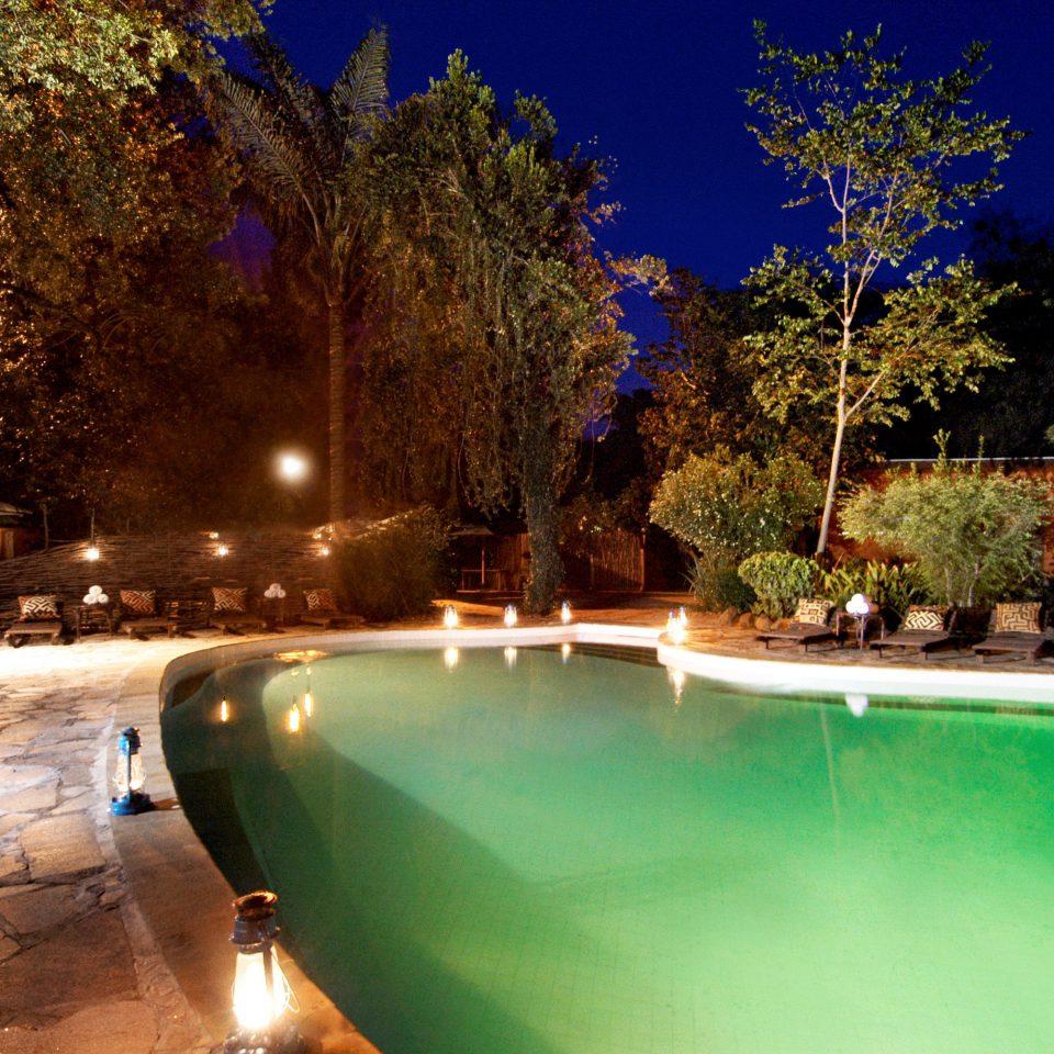 Country Grounds Lodge Pool Romantic Safari tree swimming pool light landscape lighting backyard Resort green night