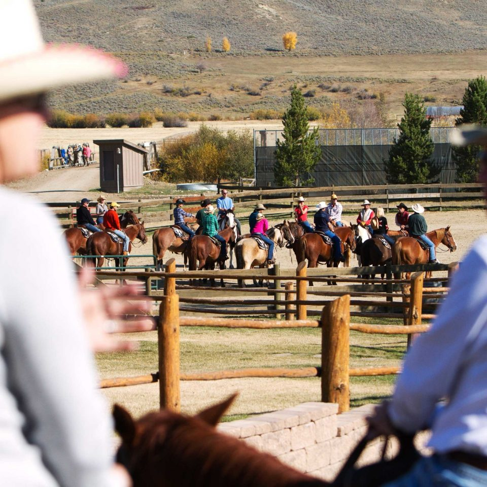Country Mountains Ranch Rustic Scenic views fair animal sports equestrian sport tradition rodeo