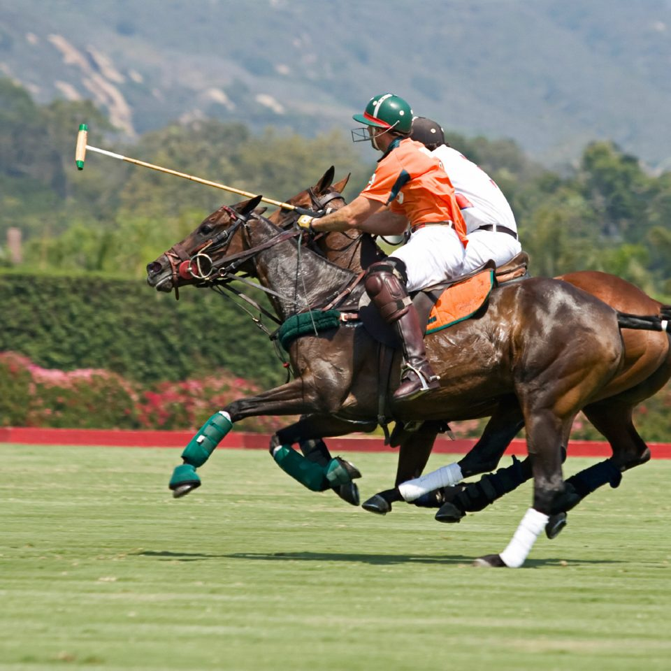 Country Nature Outdoor Activities Outdoors Scenic views Sport mountain grass ball game polo sports stick and ball games team sport stick and ball sports equestrian sport air jumping animal sports jockey horse racing