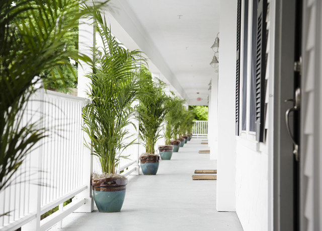 property plant building house condominium home Courtyard