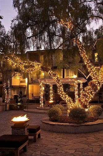 tree landscape lighting lighting christmas decoration Courtyard mansion plant