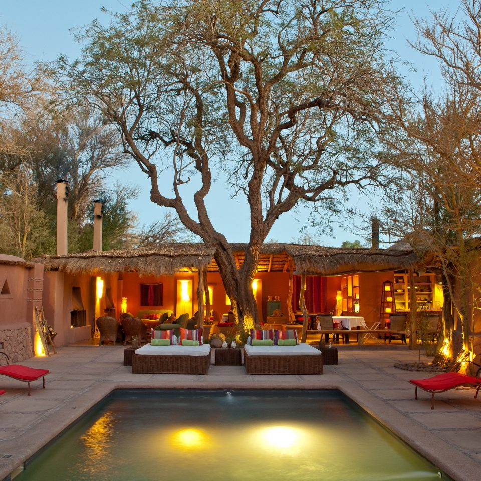 Courtyard Desert Firepit Lounge Outdoors Patio Pool Rustic tree sky street backyard flower hacienda way