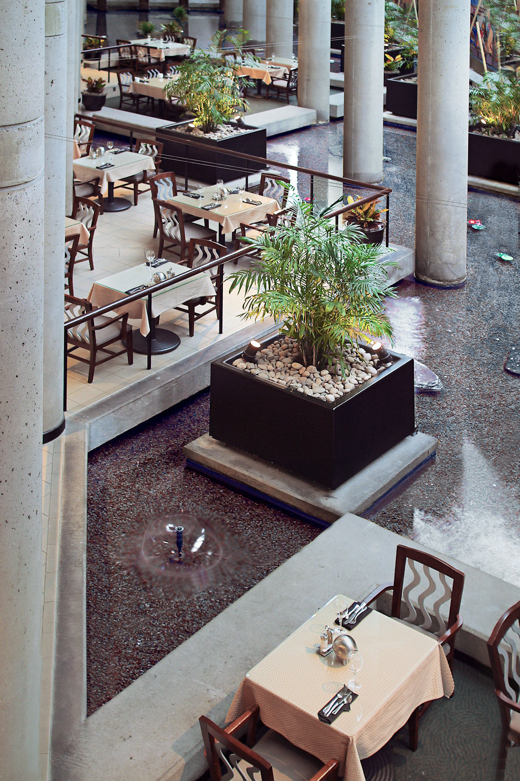 Dining Drink Eat Courtyard home backyard plant stone