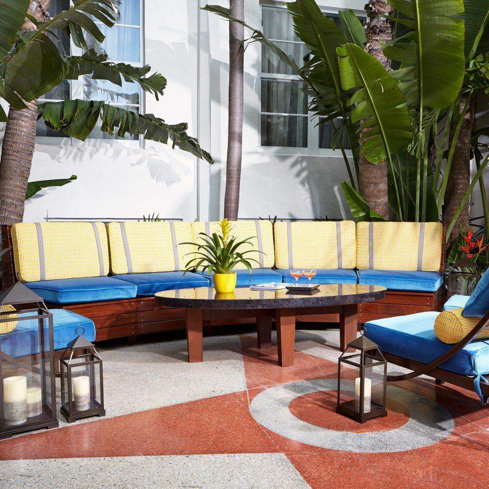 Dining Drink Eat Luxury chair leisure property Resort backyard home Villa condominium Courtyard plant