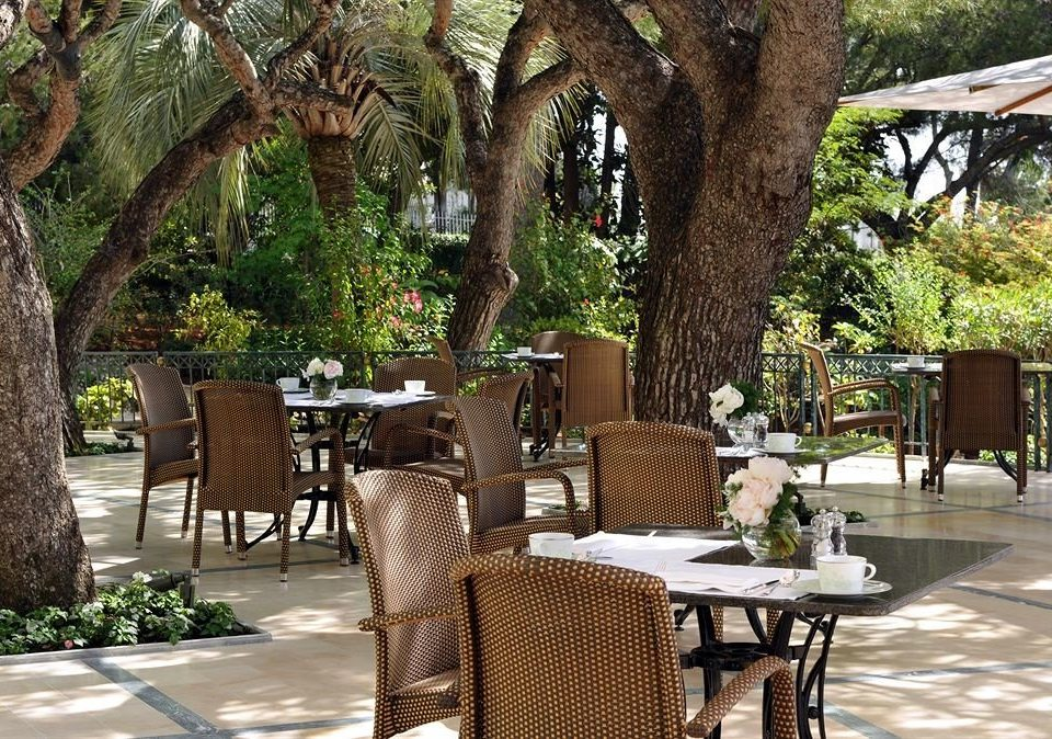 tree chair property Resort restaurant Courtyard home Dining outdoor structure backyard Villa Garden yard hacienda