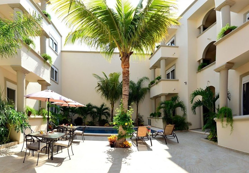 tree condominium property Resort building plant Villa Courtyard home hacienda Dining plaza porch palm