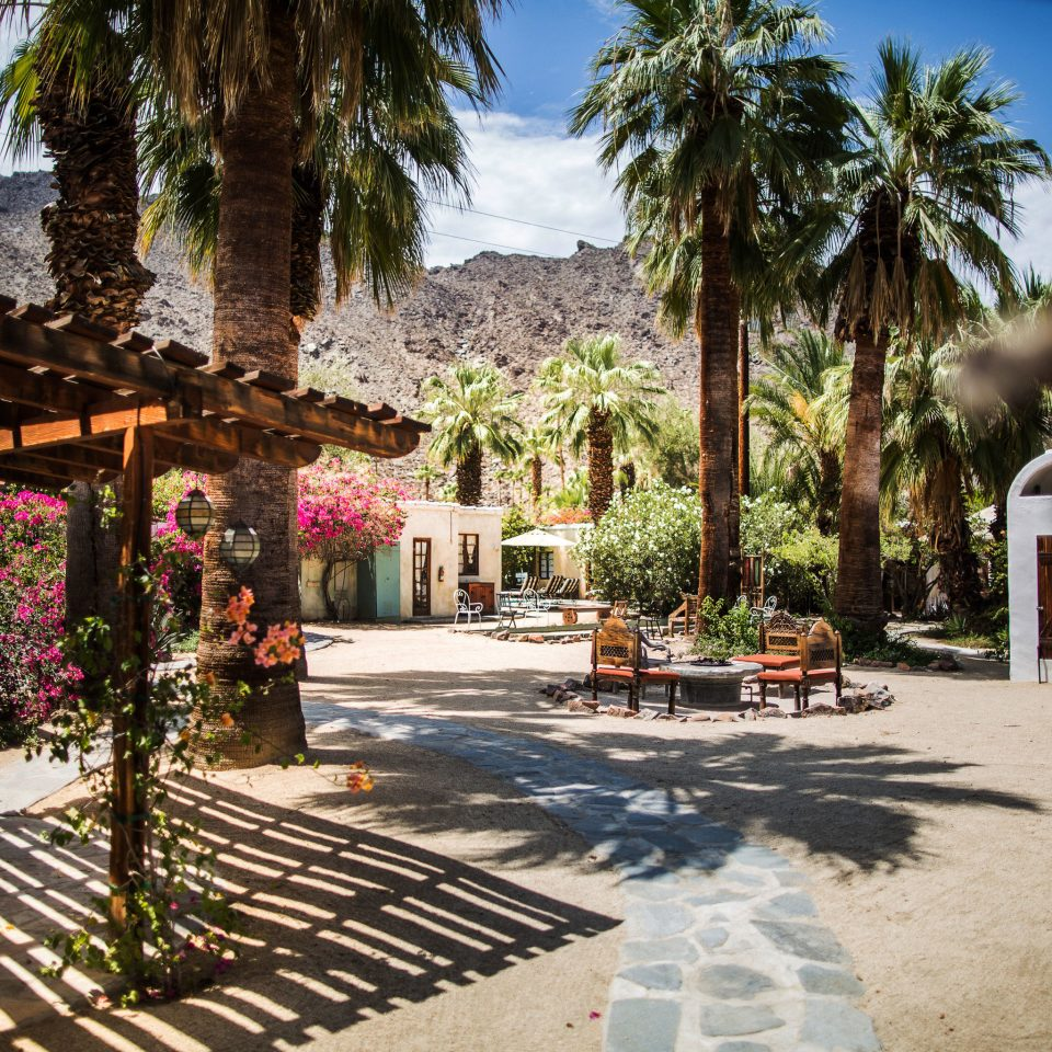 Editors Picks Luxury Travel Trip Ideas tree Resort Courtyard home hacienda arecales mansion Villa backyard Village flower