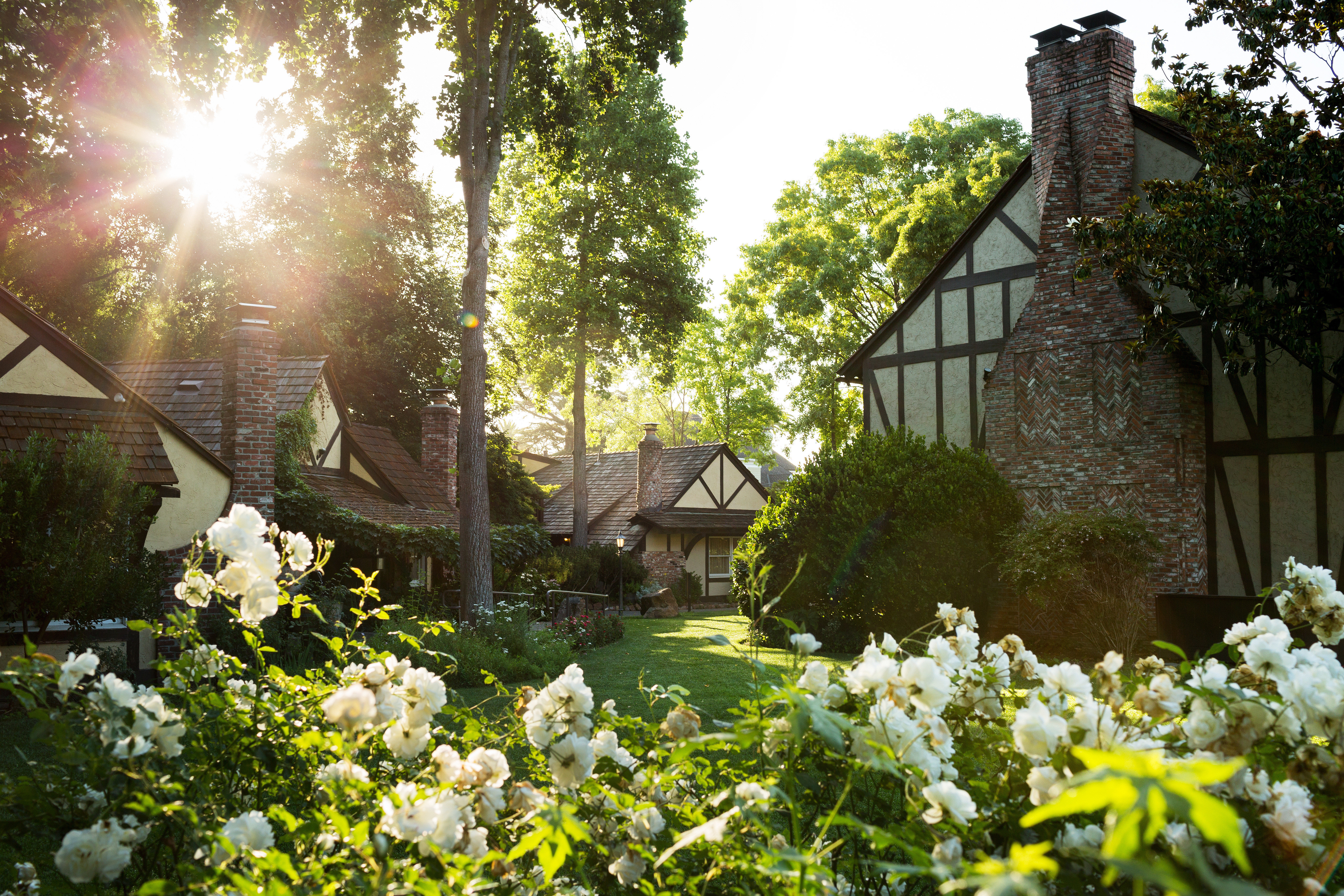 Exterior Garden Grounds Inn Romantic tree flower plant house backyard yard lawn sunlight cottage Courtyard bushes surrounded day