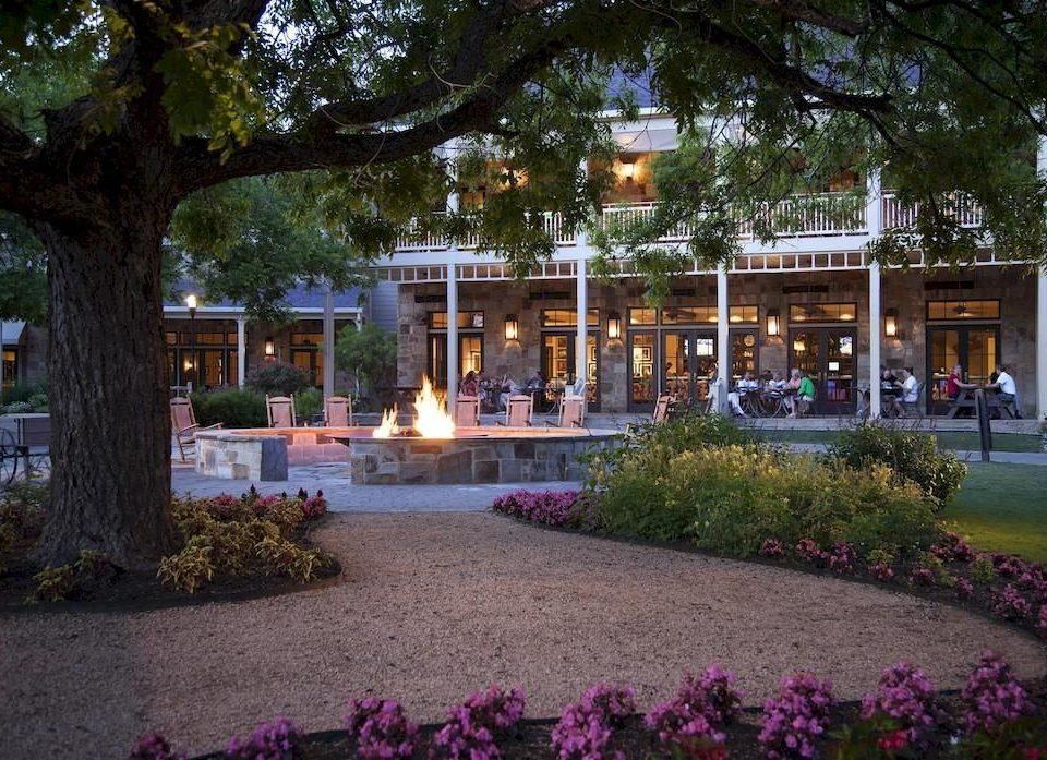 Exterior Resort tree plaza flower Garden restaurant Courtyard plant
