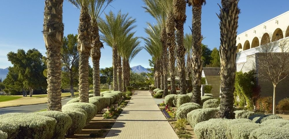 tree sky grass building arecales Garden Courtyard plant stone arch colonnade