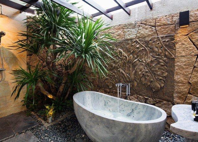 ground plant tree backyard Garden Courtyard arecales yard palm stone
