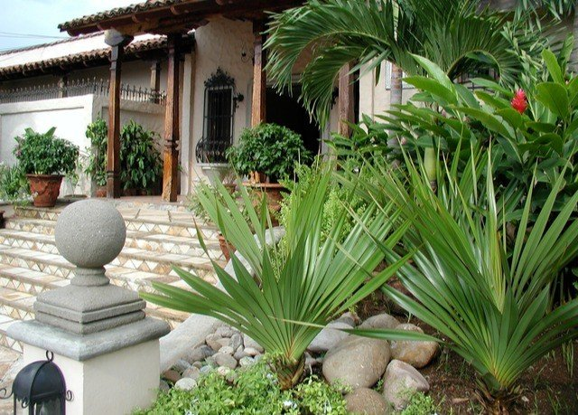 plant property palm tree arecales Garden yard backyard landscape outdoor structure landscaping lawn Courtyard