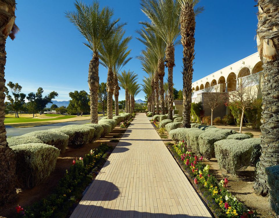 tree sky building walkway arecales Garden palace Courtyard flower palm stone colonnade
